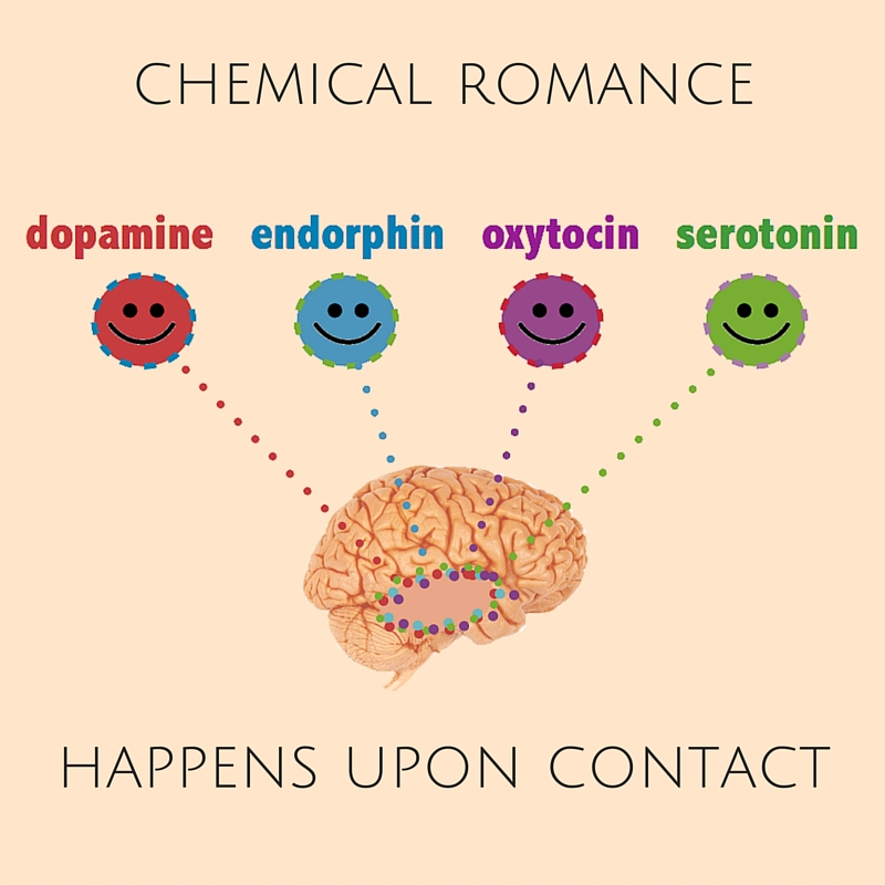 brain chemicals released with orgasm