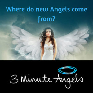 Angels Recruitment